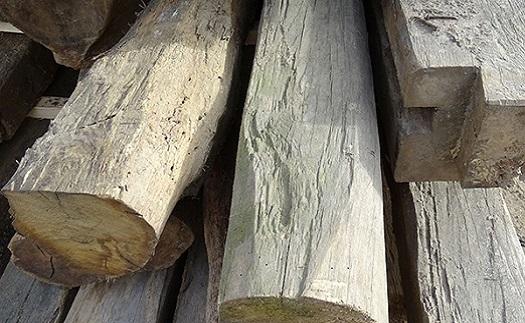 Výkup a likvidace odpadního dřeva - z demolic, palety, kancelářský nábytek, altány, větve