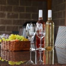 Ubytování na jižní Moravě s ochutnávkou vín