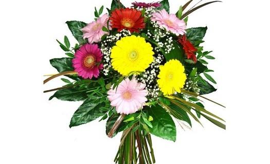 Květinářství Aira, rozvoz květin Město Albrechtice, kytice k narozeninám