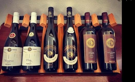 Skvělé víno z vlastní vinice Perná