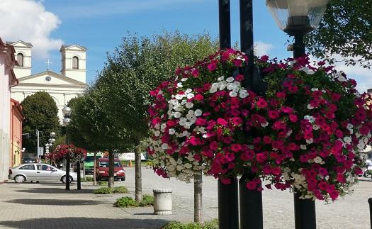 Poradenství, návrh a realizace květinových dekorací pro obce, města a komerční a veřejné budovy