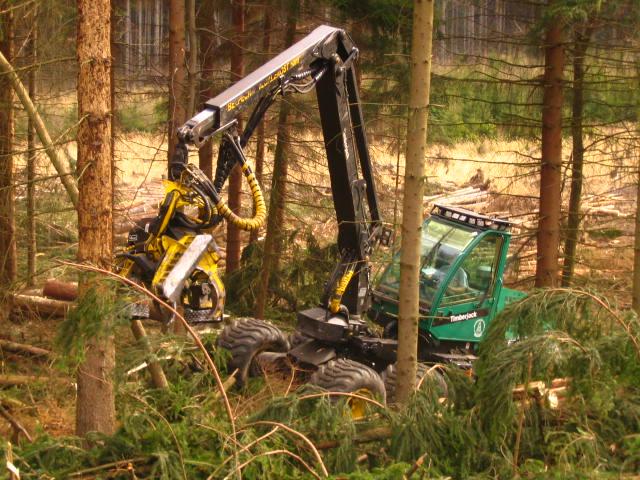 Těžba a přibližování dřeva Srlín.