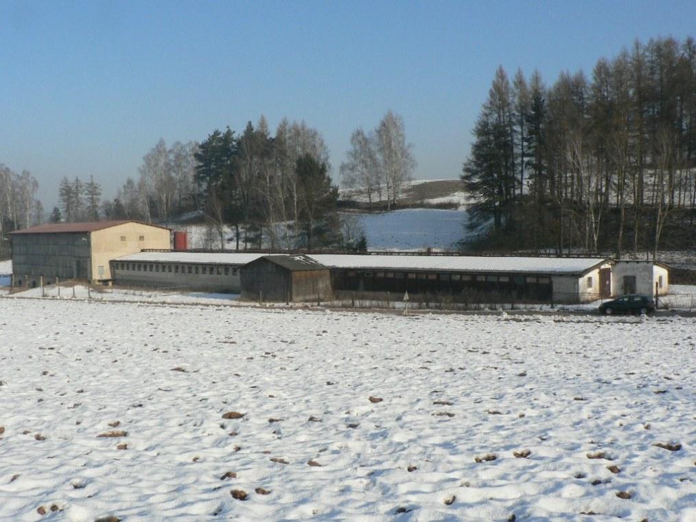Prodej nemovitosti odchovna dobytka Dolní Dobrouč Ústí nad Orlicí