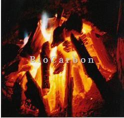 BULHARSKO; Uhlí a dřevo na topení