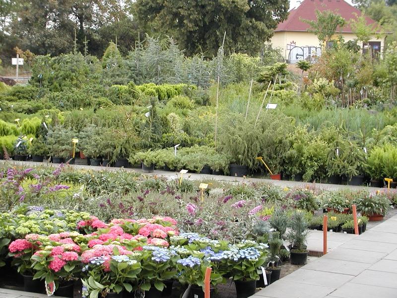 Zahradnictví Brno