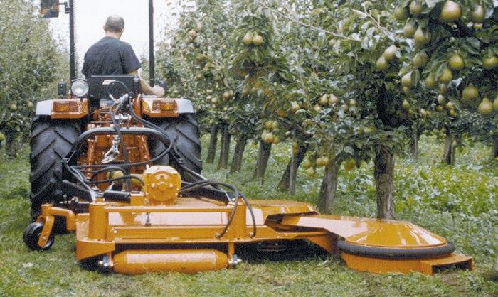 Rosiče pro sady Zlín