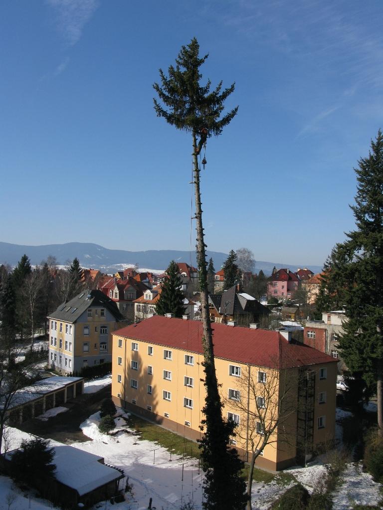 Rizikové havarijní kácení stromů Liberec Praha