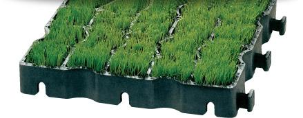 dokonalé zakrytí trávou