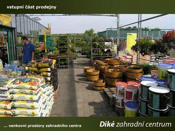 Široký sortiment okrasných rostlin