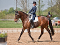 Kladruber Pferde Pferdezucht und Verkauf, die Tschechische Republik.