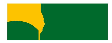 Großhandel Samen Mohn, Sonnenblumen, Lein, Hirse, Erbsen, Senf, Kümmel, die Tschechische Republik