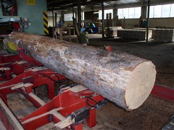 palivové dřevo Přerov