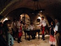 Ochutnávka skvělých vín Valtice