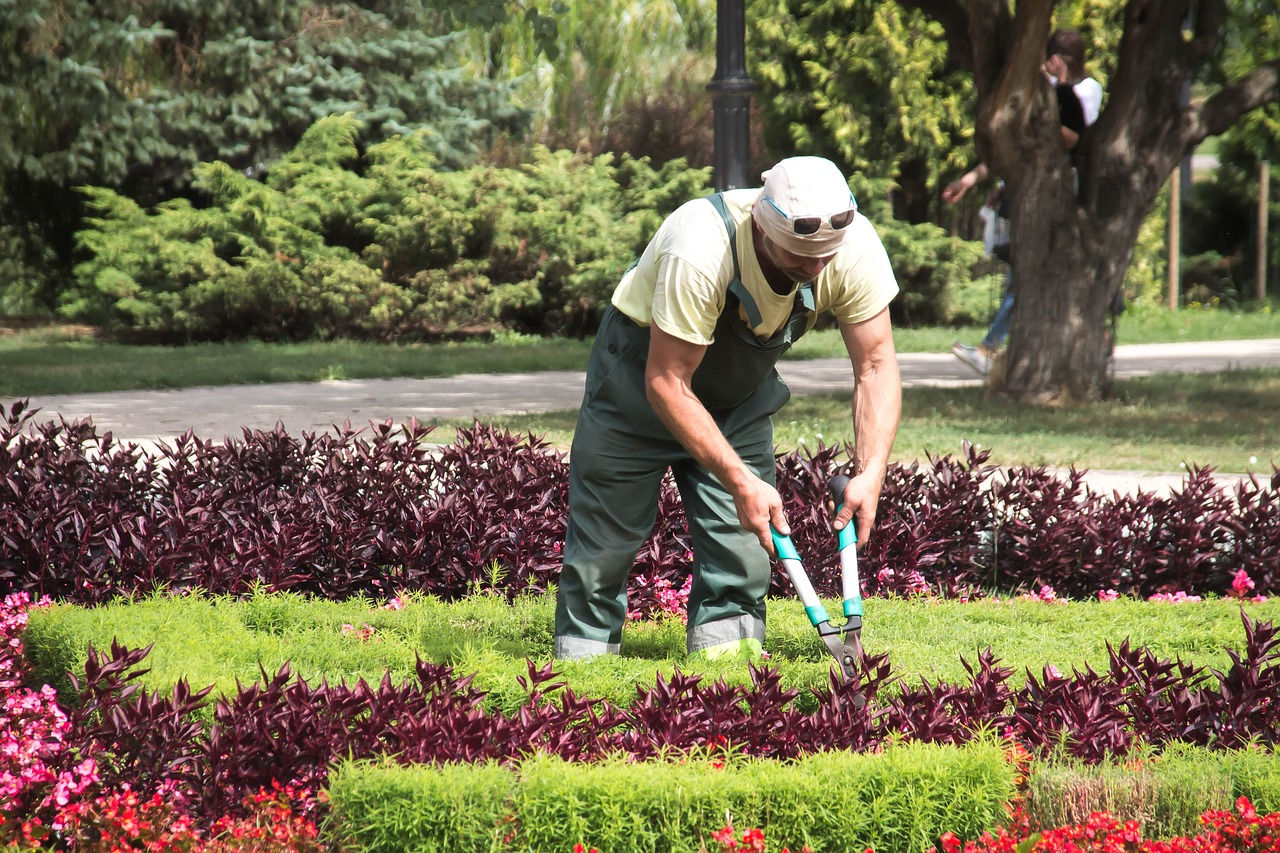 Realizace zahrad a údržba zeleně Praha