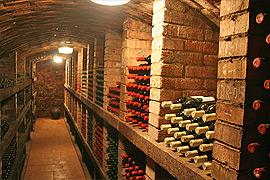 Degustace vín Mikulčice