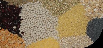 balení sypkých a zrnitých potravin