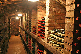 Degustace vín Mikulčice, jižní Morava