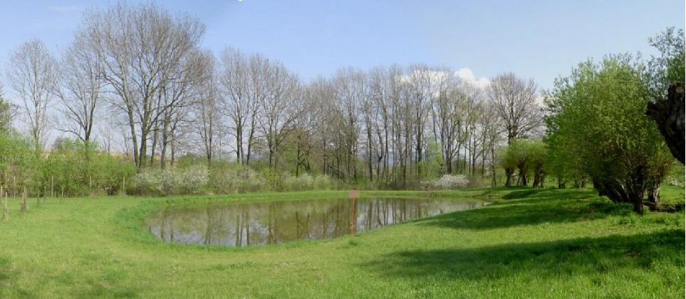 Sídelní zeleň, výsadba uvnitř obce, v zastaveném území Zlín