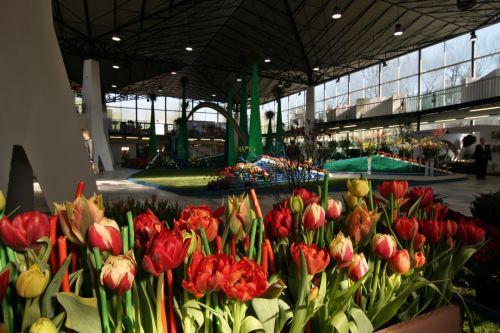 Jarní zahradnické trhy Olomouc, Hortifarm
