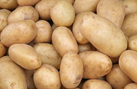 České produkty – brambory, okurky, jablka, cibule vypěstované na jižní Moravě, Znojmo, Brno