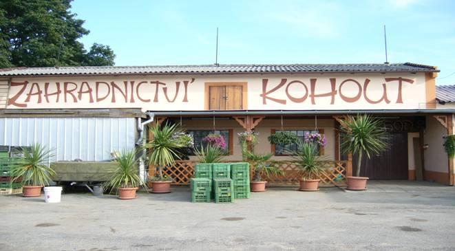 Výprodej letniček, balkónovky, prodej čerstvé zeleniny Kroměříž