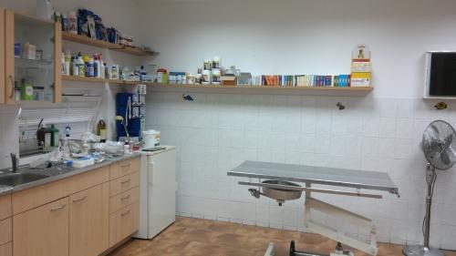 Veterinární ordinace Hlučín