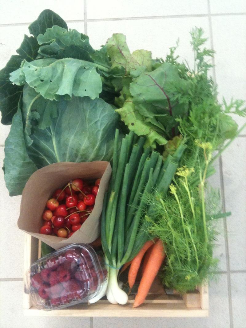 Prodej, eshop - poctivé biopotraviny, biokošíky, farmářské výrobky