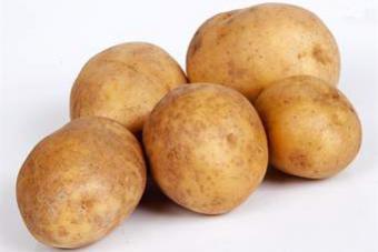 Klíčení sadbových brambor
