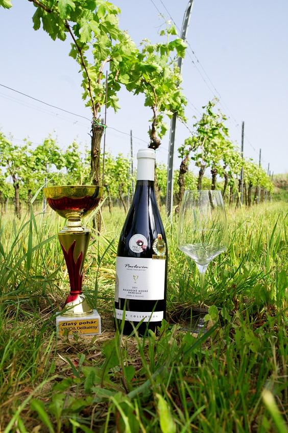 Vinařství Velké Pavlovice