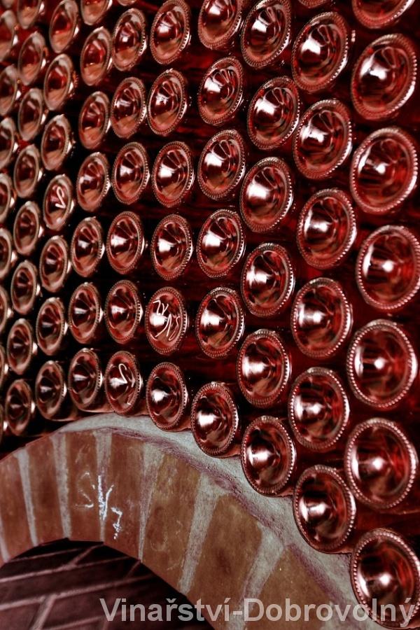 Vinařství, vinný sklep, degustace vín Znojmo