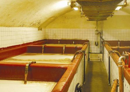 Ochutnávka piva Rohozec, exkurze a prohlídky pivovar Rohozec