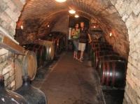 Vinařství s degustace vín ve vinném sklípku s ubytováním