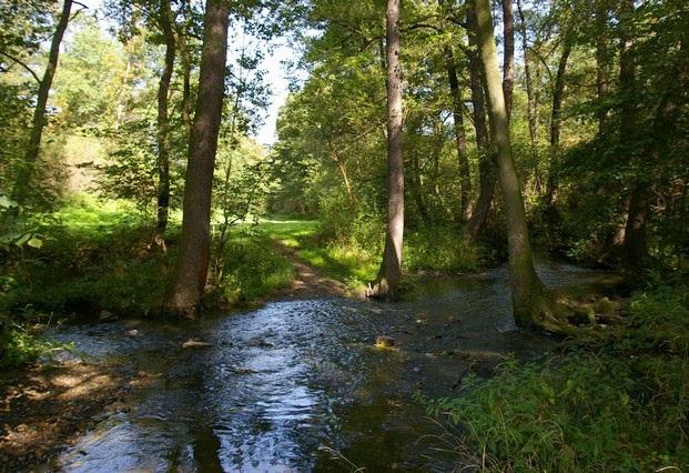 Ekologická výchova pro školy