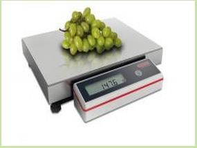 Průmyslové váhy se přizpůsobí i těm nejtěžším podmínkám (Svitavy)