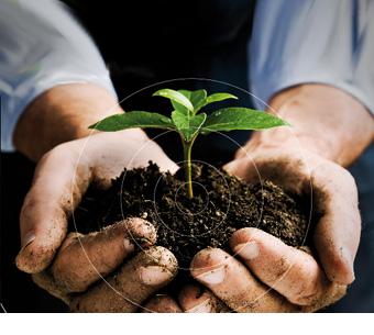 Syndikovaný výzkum v zemědělství