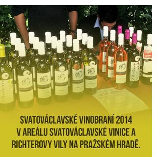 Prodej kvalitního vína z vinařství, vína z Pavlovína