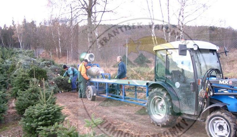 Prodej Vánočních stromků Sušice