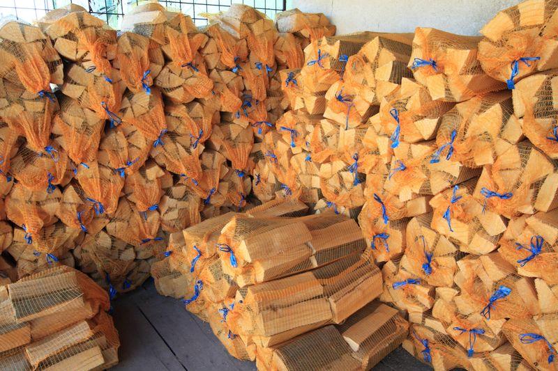brennholz in der n he pflanzen f r nassen boden. Black Bedroom Furniture Sets. Home Design Ideas
