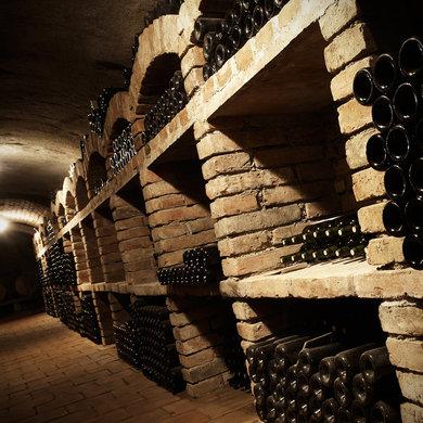 Degustace, řízená ochutnávka vín ve vinném sklepě Znojmo