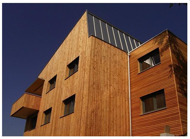 Dřevěné fasádní palubky, obložení domu