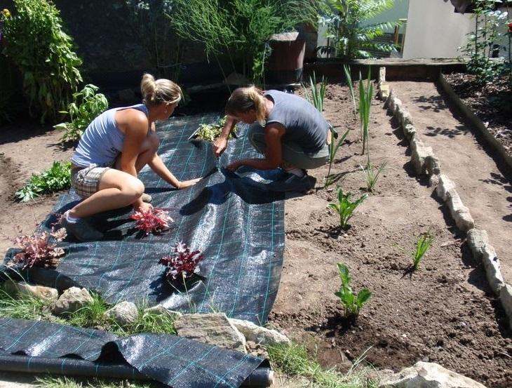 Zahradu upravíme podle vašich představ
