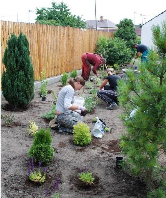 Náš tým pracuje rychle, a tak bude vaše zahrada hotová, než se nadějete