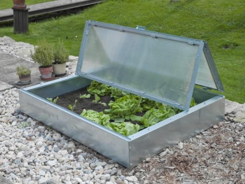 Pařeniště je skvělá pomůcka, jak rychle vypěstovat zeleninu