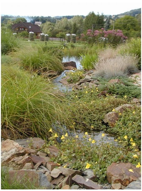 Projektování zahrad včetně potůčků