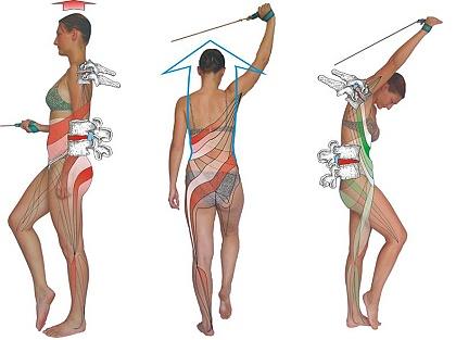 Rehabilitační cvičení SM systém, bolest zad