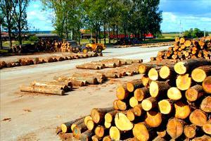 Truhlářské řezivo, velkoobchodní prodej stavebního řeziva, výroba dřevoproduktů Znojmo