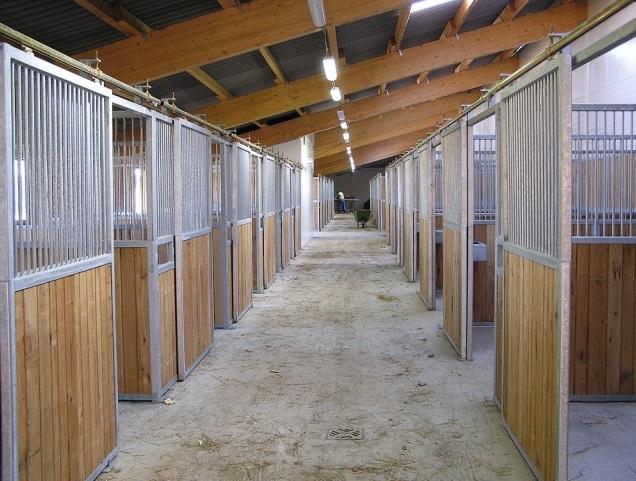 příslušenství a boxy pro koně
