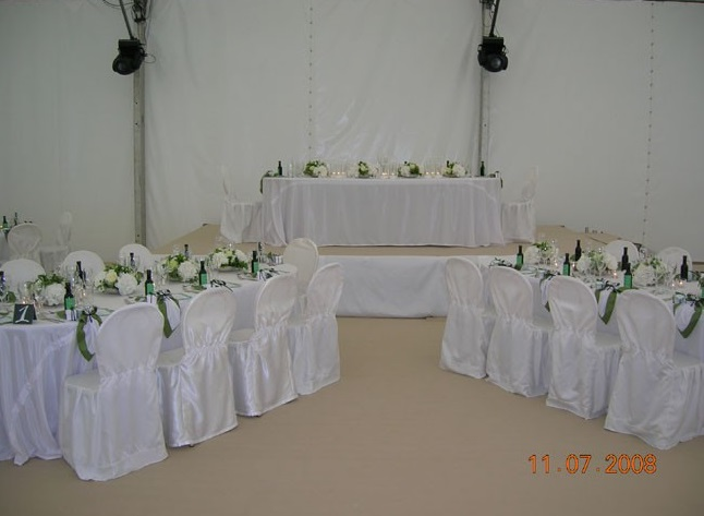 párty na svatbě Leoše Mareše