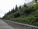 Komplexní zahradnické práce a realizace parků pro obce i firmy