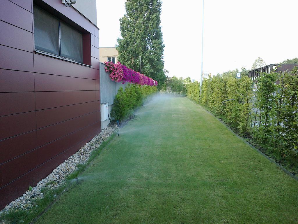 Krásný upravený trávník díky zavlažovacímu systému